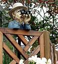 http://www.buecher-wiki.de/uploads/BuecherWiki/th128---ffffff--beobachter_thomas_max_mueller_pix.jpg.jpg