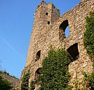 Burgruine Ehrenfels - (c) by Pixelio.de