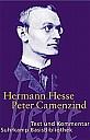 Peter Camenzind, Buchcover - (c) Suhrkamp Verlag