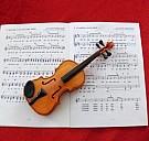 Ein Lied mit Geige - (c) Judith Lisser-Meister/PIXELIO